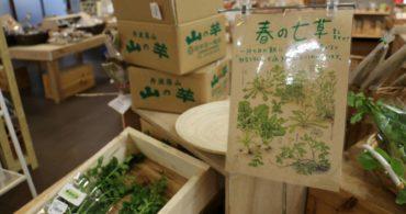 古来より1月7日は七草粥を食べる慣習があります