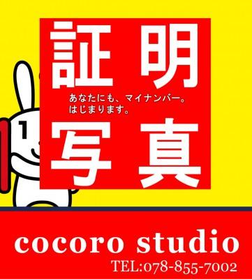 就活用の証明写真なら三宮のココロスタジオ